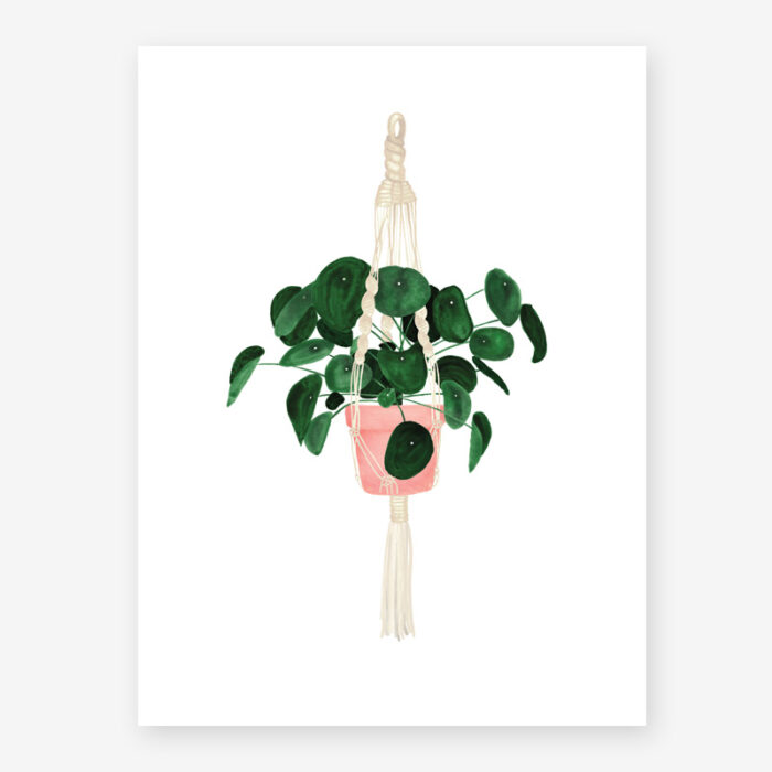Poster Pilea - All the ways