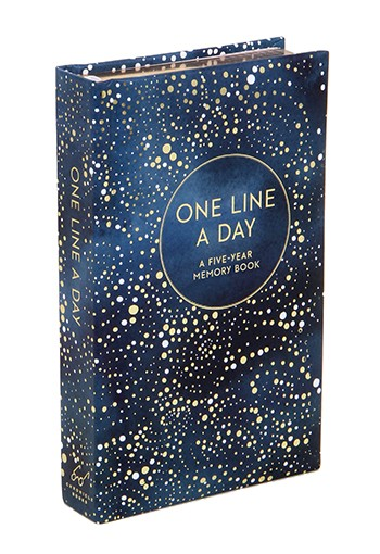 One line a day canvas - chronicle books